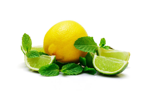Lime – Menthe